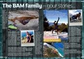 BAMlife magazine